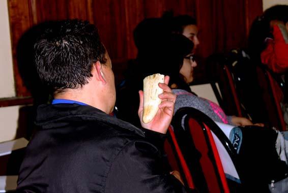 Gustavo-Vargas-observando-colmillo-cachalote.jpg